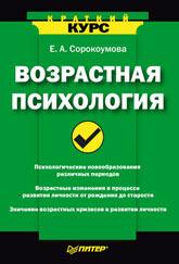 Книга Возрастная психология. Краткий курс. Сорокоумова