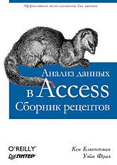 Книга Анализ данных в Access. Сборник рецептов. Блюттман