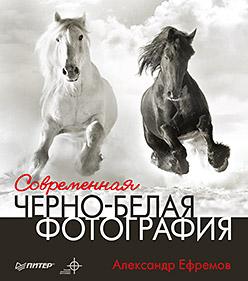 Купить книгу почтой в интернет магазине Книга Современная черно-белая фотография. Ефремов